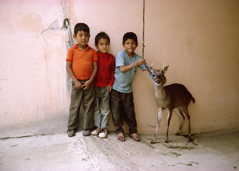 34. Deerboys.1.jpg