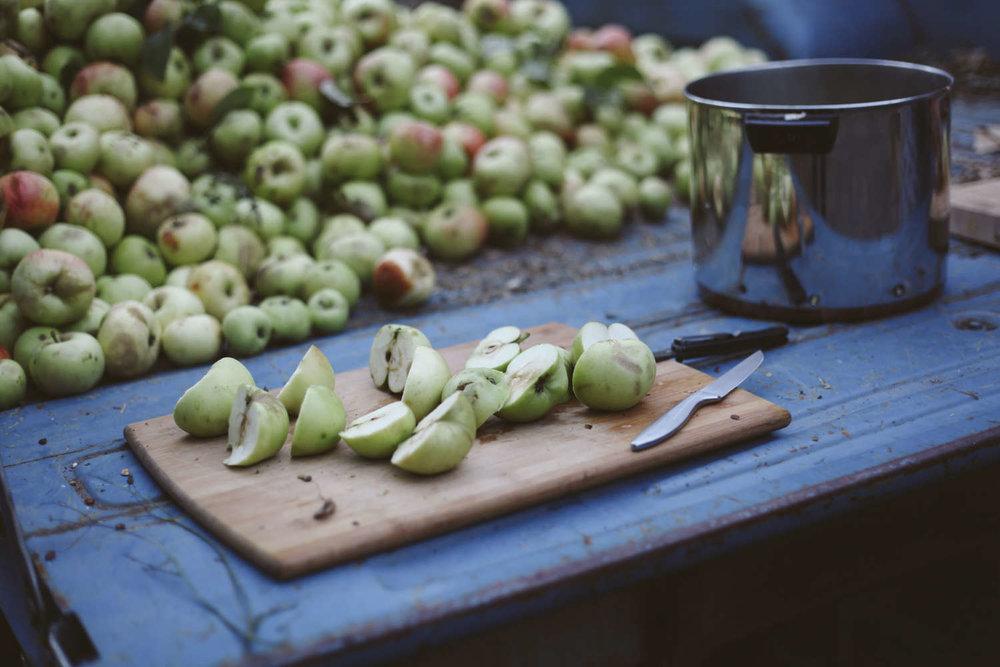 Apples (2) - Copy.jpg