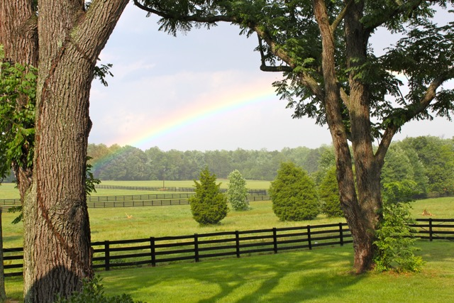 Rainbow at the farm.jpg