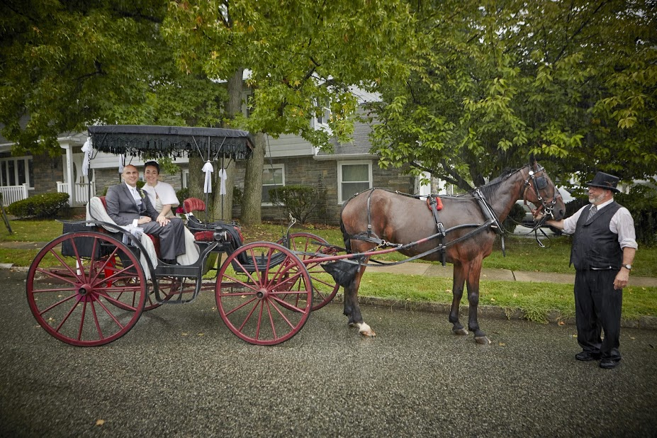 Sergio Wedding Horse carriage.jpg