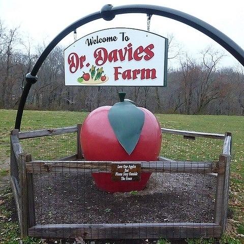 Dr Davies Farm.jpg