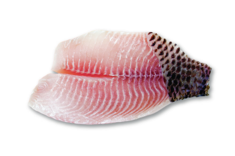 Tilapia skin patch on fillets copia.jpg