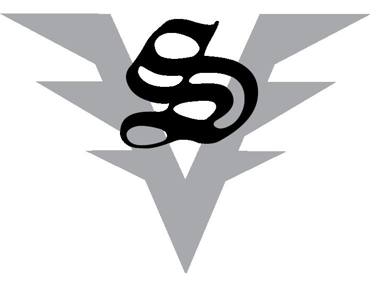 VLS logo.png