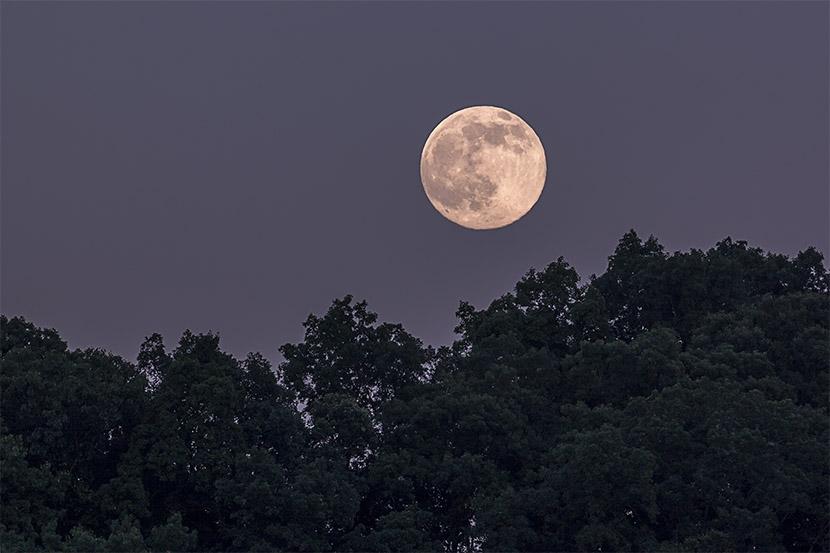 moonrise .jpg