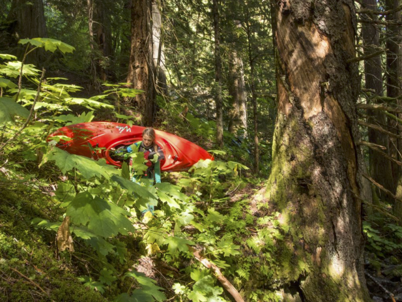 Darby McAdams portages her kayak through a steep section of Devil's Club filled forest. Photo: Maranda Stopol.