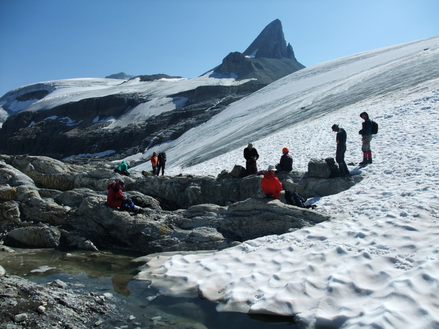 The Wapta Icefield with St. Nicholas Peak. Photo by Nellie Johnson.