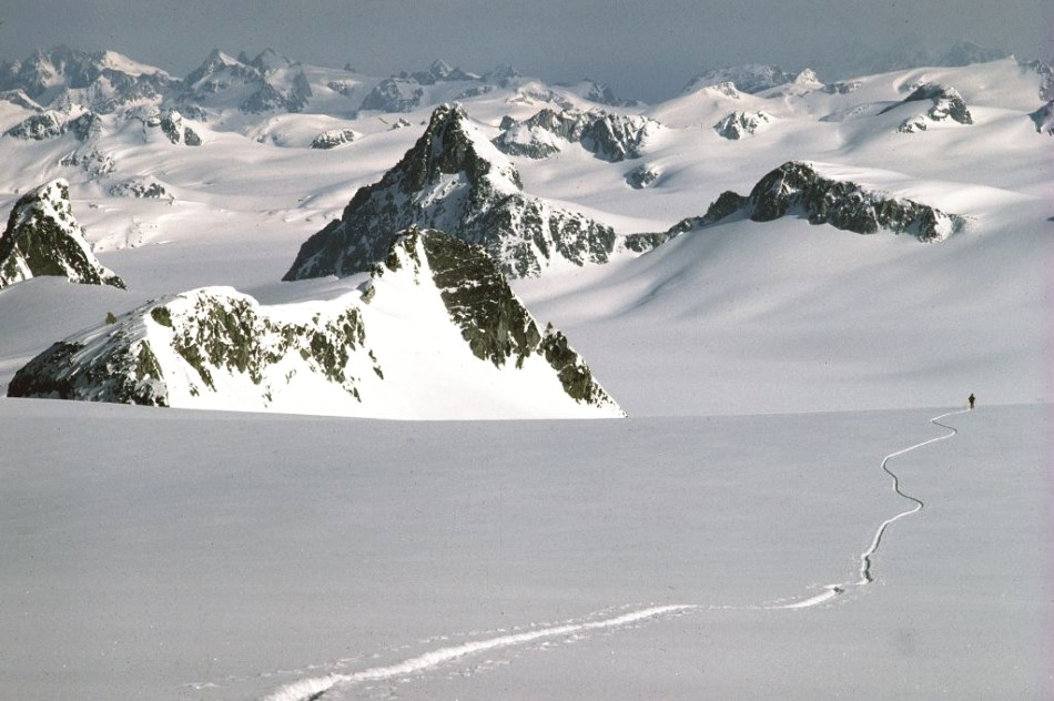A skier meanders across the huge expanse of the Homathko Icefield in the Coast Mountains. Photo by John Baldwin.