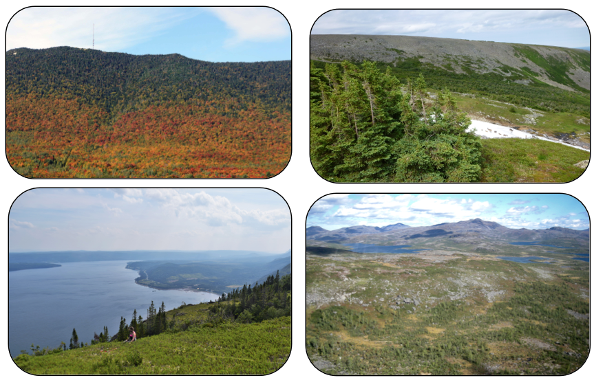 Figure 2 : Span of the Canadian Appalachian range in (a) Parc nationale du Mont Mégantic, QC (photo credit: Mark Vellend), (b) Chic Choc Mountains, QC (Sébastien Renard), (c) Long Range Mountains, Great Northern Peninsula, NL (Anna Crofts), and (d) Mealy Mountains, NL (Brian Starzomski).