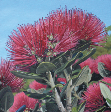 It's Christmas – Pohutukawa