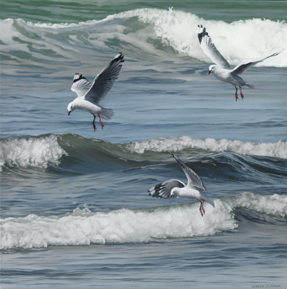 The Art of Three Gull Formation Flying