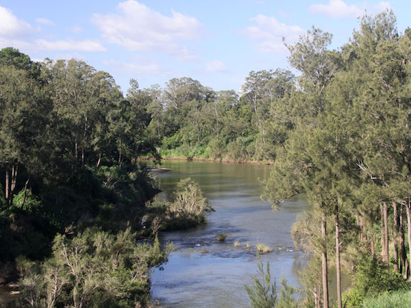 Richmond River at Casino.jpg