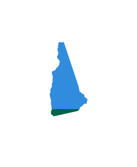 Wave-100-States-(1)-3.16NEW-HAMPSHIRE.png