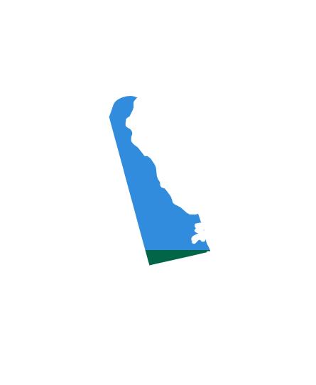 Wave-100-States-(1)DELAWARE.png