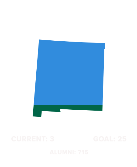 Wave-100-States-(1)NEW-MEXICO.png