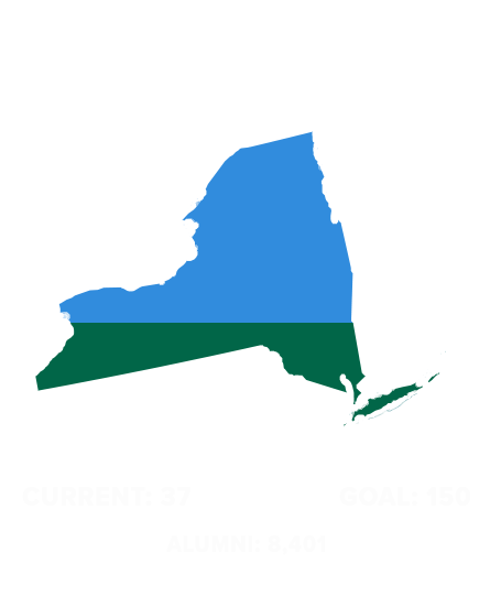 Wave-100-States-(1)NEW-YORK.png