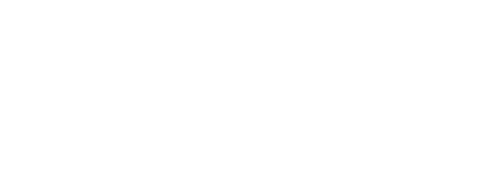 Brick Campaign Verbiage1.png