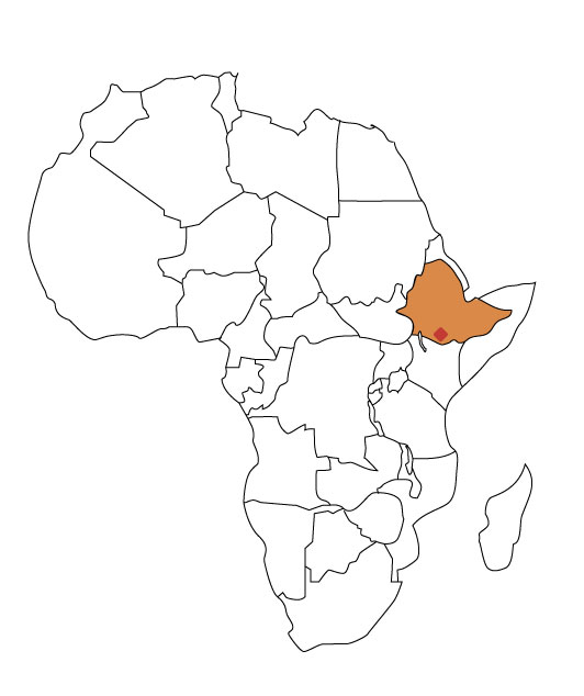 ethiopia-guji.jpg