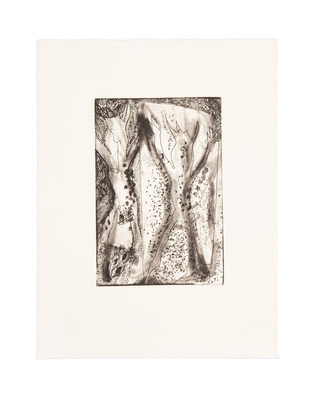 BREAK  Intaglio/monoprint  Image: 6 x 8.9 inches  Paper: 11 x 15 inches  Printed by 10 Grand Press  © 2008 Carol Morrison