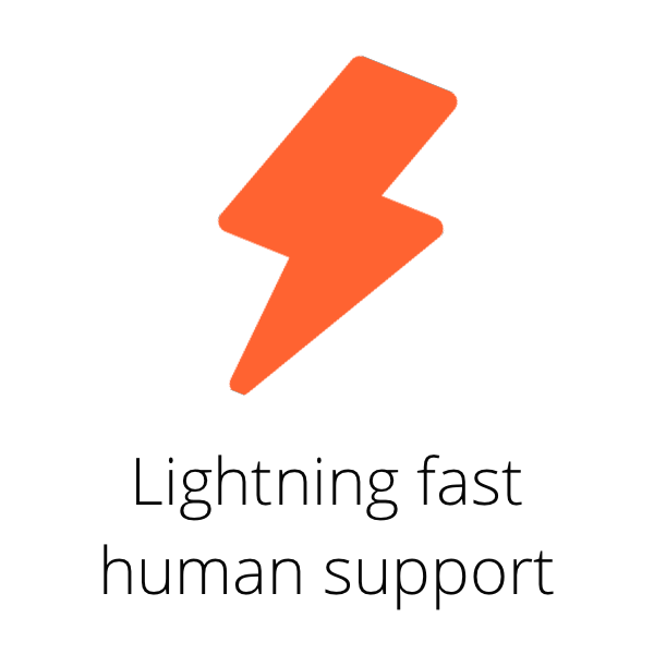 Lightning speed support (1).png