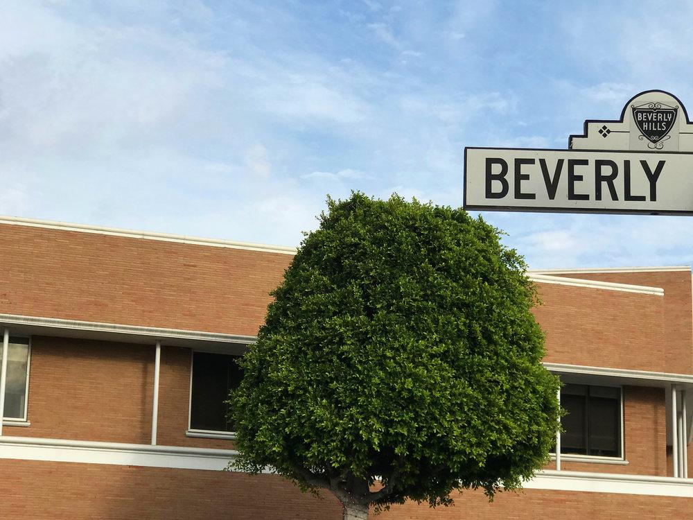 Fisch Properties - Beverly Hills.jpg