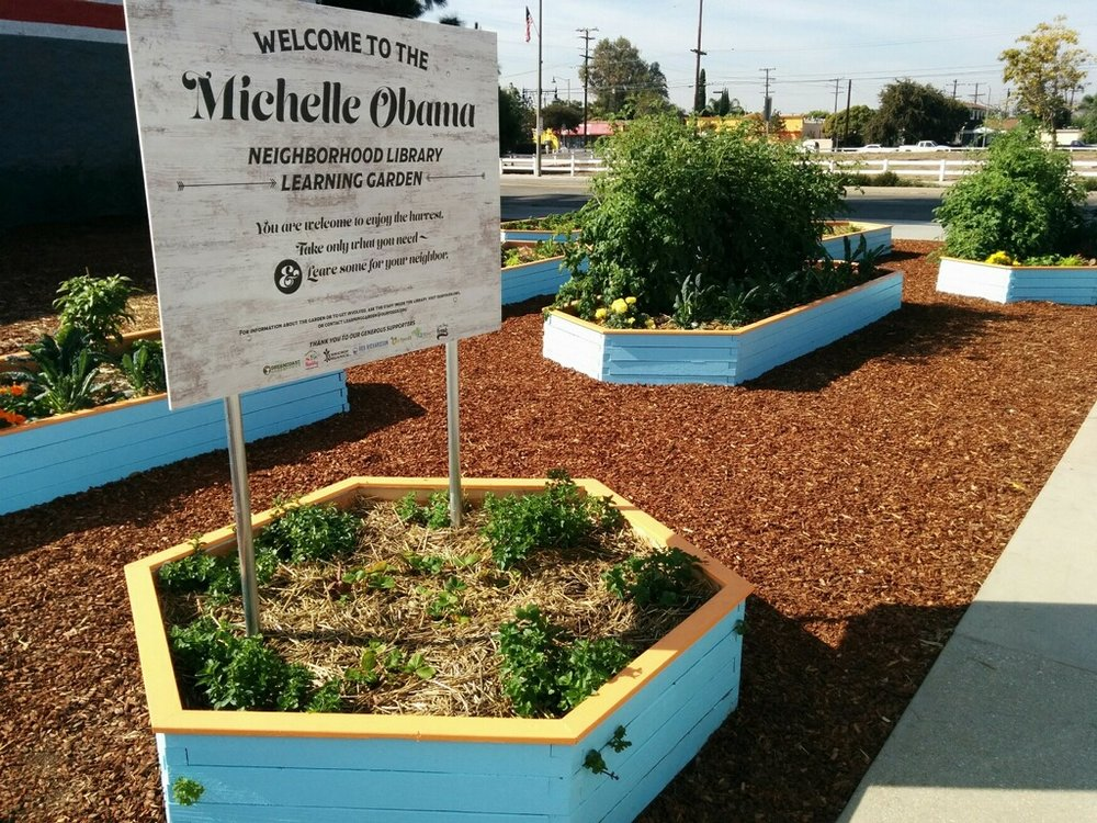 Michelle Obama Neighborhood Community Garden - Ourfoods installed an innovative garden project (both technically and socially) in North Long Beach, in partnership with Vice Mayor Rex Richardson's District Nine, Uptown Business District, Long Beach Fresh and the Long Beach Public Library.This highly water-efficient, soil based garden has precision irrigation and fertigation and has provided incredible yields. In just the first 2 months, over 200 lbs of produce was harvested. All food is picked by the community for the community at no cost with on-going educational opportunities throughout the year.