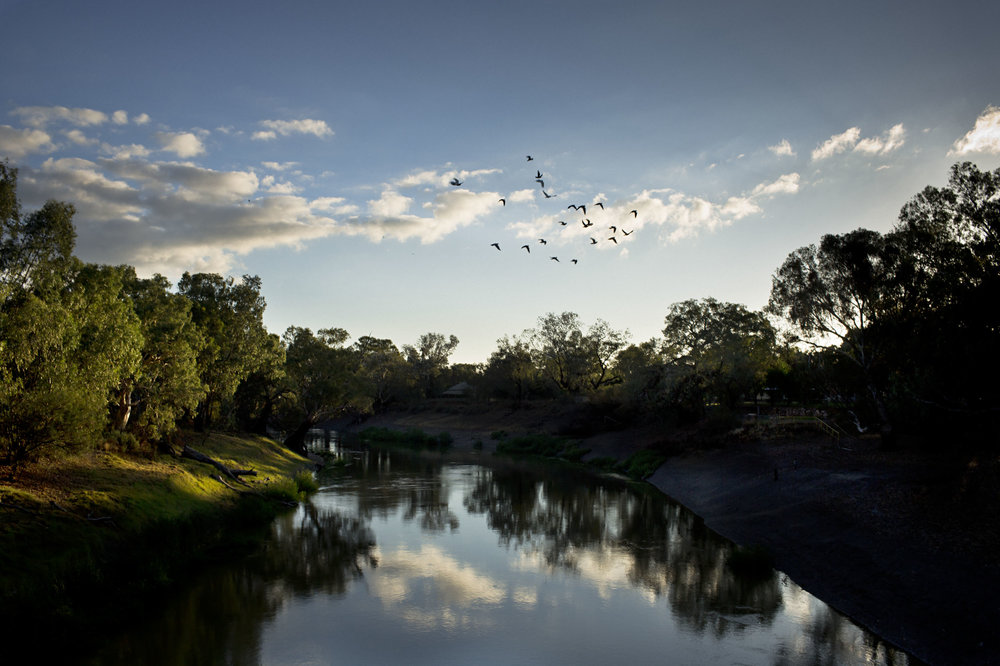 The Darling river, lifeblood to the Barkindji people in Wilcannia, NSW.