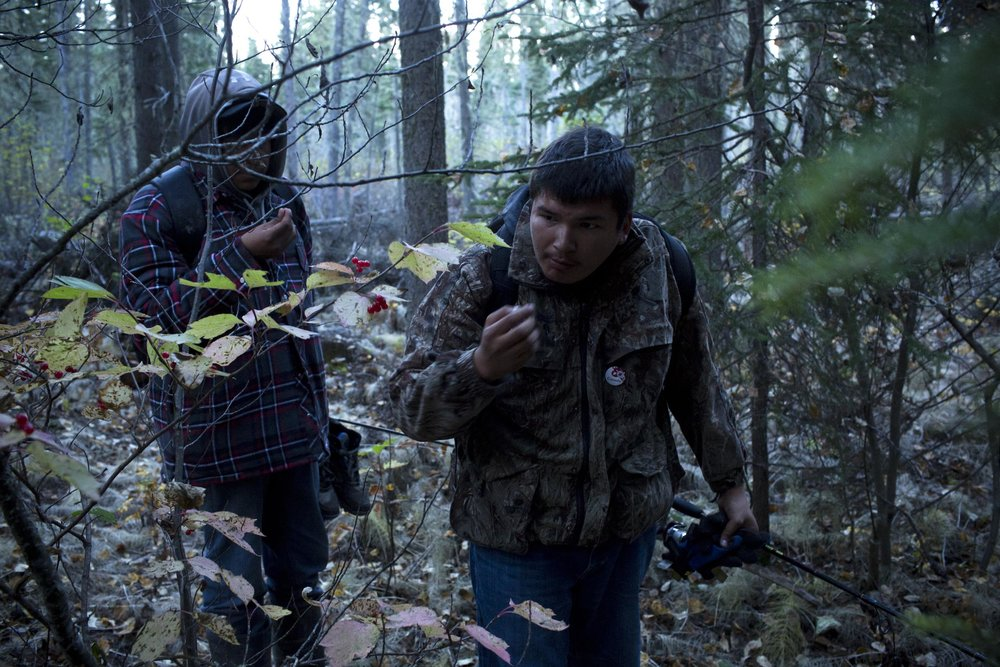 'People of the Parting Rocks' for The Pulitzer Centre on Crisis Reporting . Young men forage wild berries in Attawapiskat, Ontario.