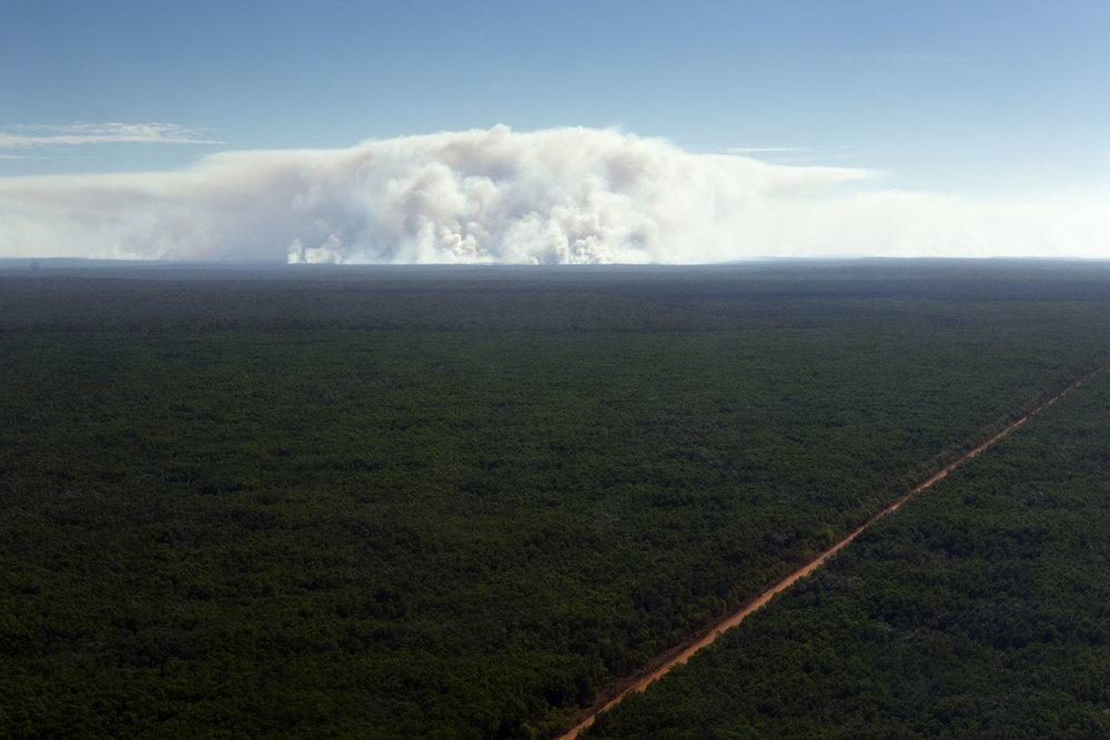 A smoke cloud rises from a controlled bushfire on Melville Island, Northern Territory.