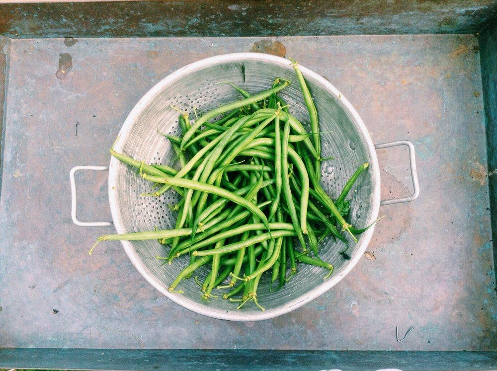 food-healthy-summer-green.jpeg