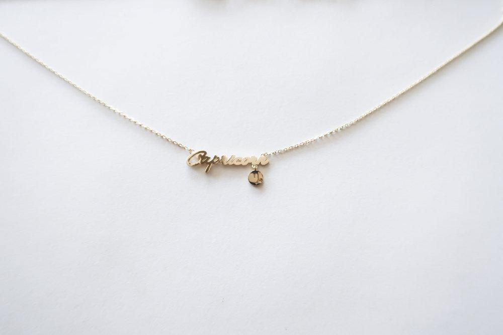 Capricorn Astrology Necklace Basis