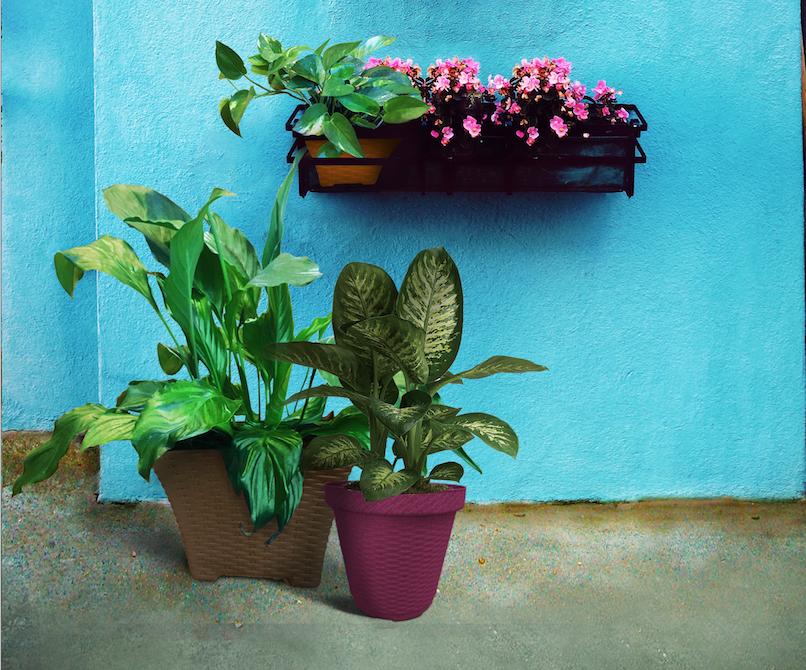 Biodegradable-Pots-Planters-Terragave-04.png