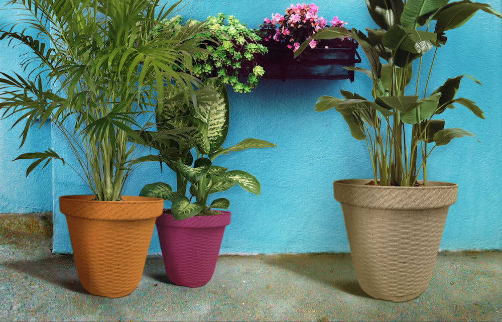 Biodegradable-Pots-Planters-Terragave-11.png