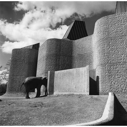 I found a lovely selection of architectural images of London zoo on the   RIBA library   this week. The penguin pool was designed by Lubetkin & Tecton in 1934 and the Elephant and Rhinoceros Brutalist house was designed by Casson Conder & Partners in 1965.