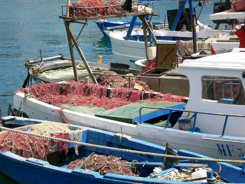 Pesca: del mare italiano decide l\'Europa — BARBARA LA ROSA