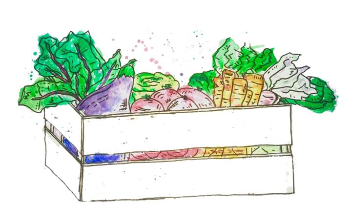 Eat with us! - Sign up for our Winter-Spring CSA share today