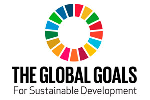 Global-Goals.jpg