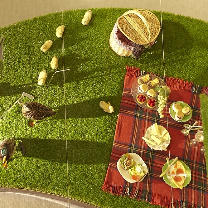 Picnic display on astroturf with ducks and chicks