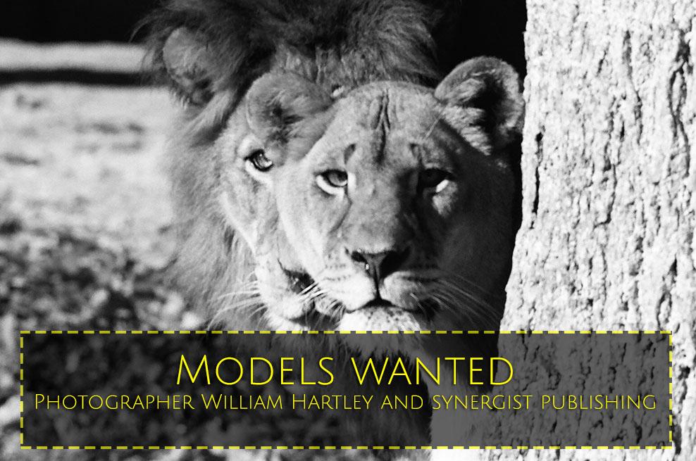 ModelsWantedLions.jpg