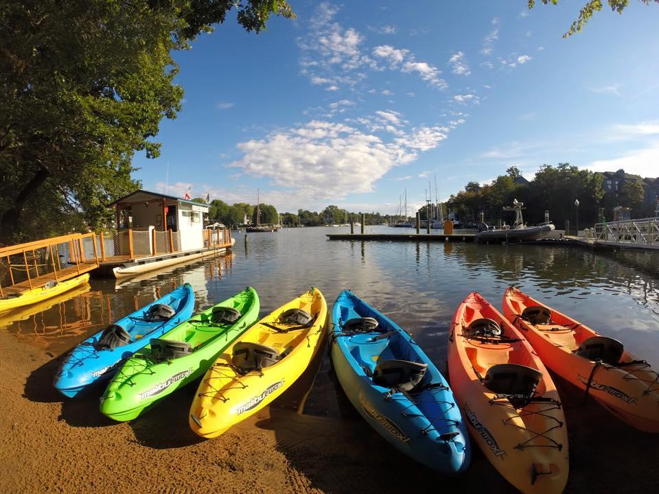 kayaks.jpg