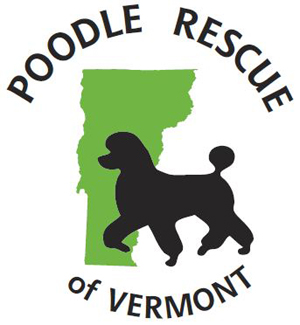 Poodle-rescue-of-vt.jpg