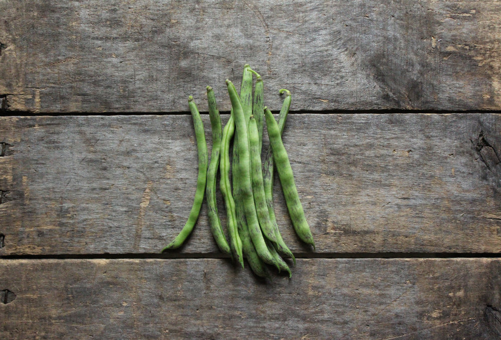 Shop: Organic Heirloom Vegetable Seeds