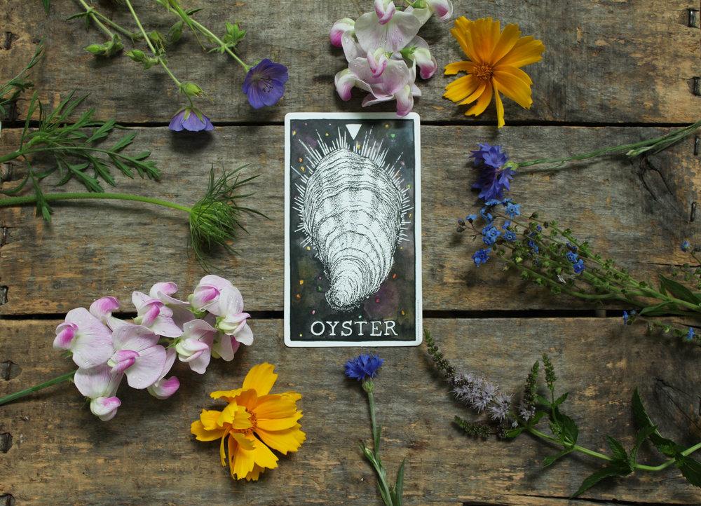 7-oyster.jpg