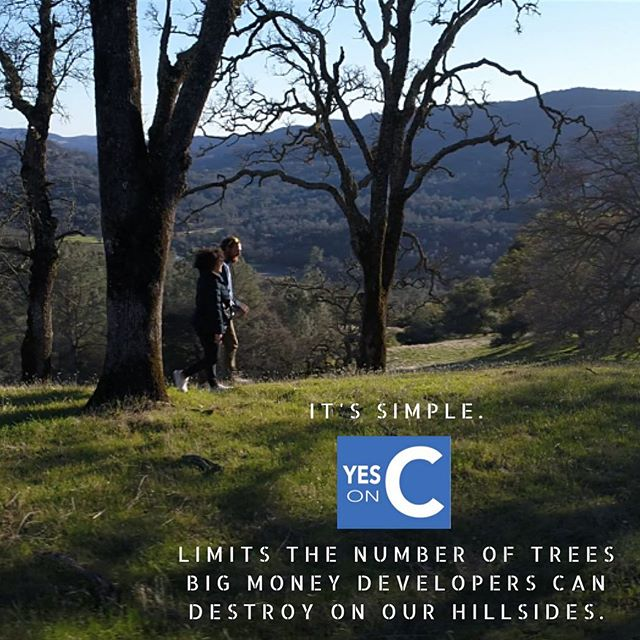 Measure C limits removal of oak woodlands to 795 acres. Without C there is no limit to the number of acres of oak woodlands that can be destroyed for vineyard development. Want to save trees? Vote YES on C.  #YesOnC #RightSideOfHistory #NapaCounty #protect #NapaValley #AgPreserve . . . .