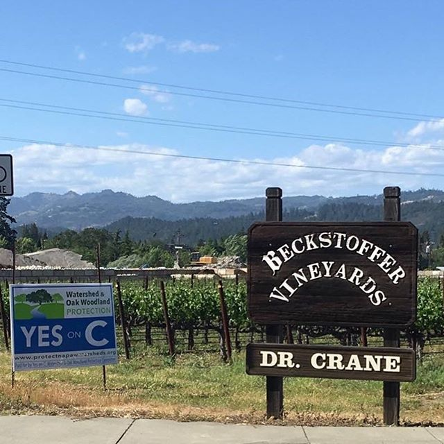 Many thanks and respect to our vintner/grower supporters, and to you all! Together, we can do this! #YESonC #ProtectNapa #RightSideOfHistory #NapaCounty #protect #NapaValley . . . . #AmericanCanyon #Napa #Yountville #StHelena #Calistoga #development #deforestation #forests #nature #protection #conservation #citizenrights #waterrights #freshwater #watershed #winecountry #citizenaction #wine #winelover #waterlover #vineyards #forests #bottlerock