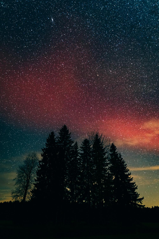 Red aurora curve