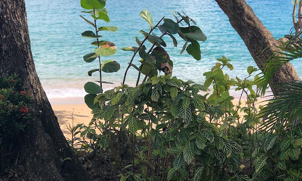 LaToc_Beach1.jpg