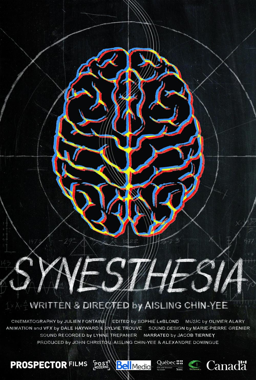 synesthesia poster.jpg