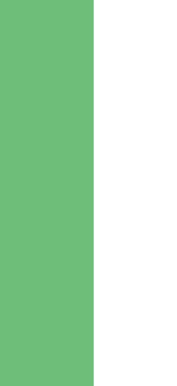 green-strip.jpg