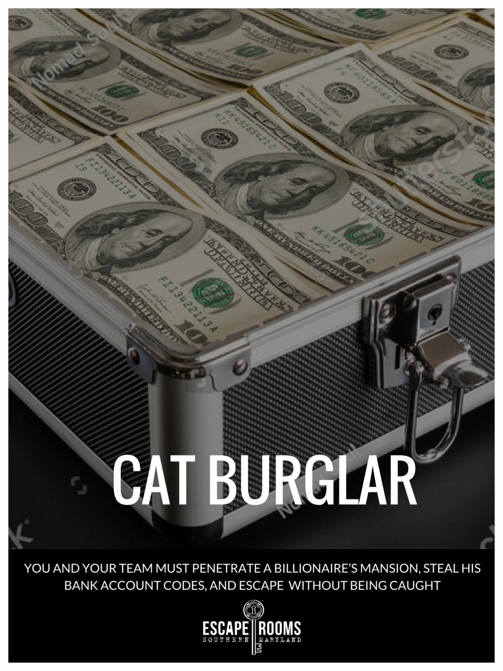 Cat Burglar escape room poster featuring a brief case full of cash and passports.