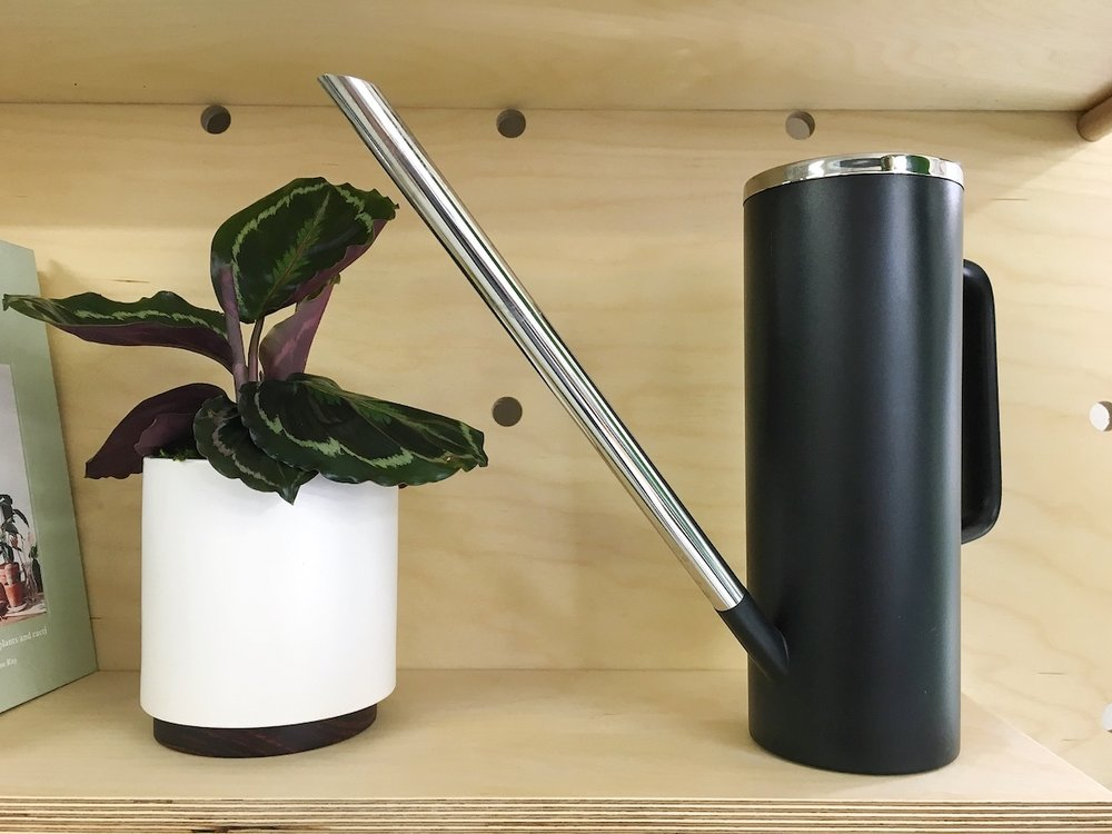 A stylish watering can  for watering (and remembering to water) plants in style.